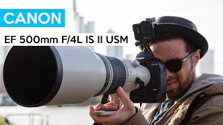 Canon EF 500mm f/4L IS II USM | 9000$ | SUPER TELEPHOTO LENS | WILDLIFE | english review