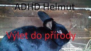 Video ADHD Helmut - Výlet do přírody