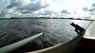 Рыбалка в порхове на реке шелоньери