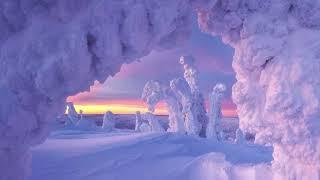 Все оттенки зимы