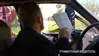 Водитель грамотно все объяснил