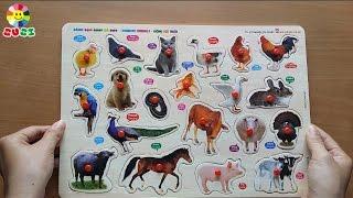 Ghép hình các con vật dễ thương   Đồ chơi trẻ em SuSi TV