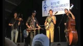 Earlybird Stringband Norwegian Reels