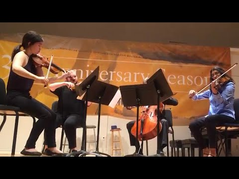 Debussy String Quartet 3rd movement