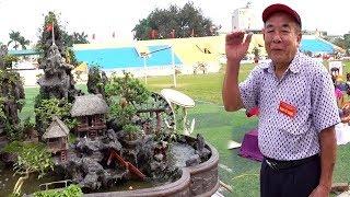 500 triệu tiểu cảnh do cụ già tự làm - Bonsai trees