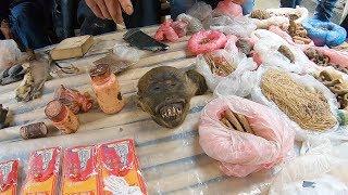 Khám phá Chợ Phố Cáo gặp ngay Đầu Khỉ bán 11 triệu