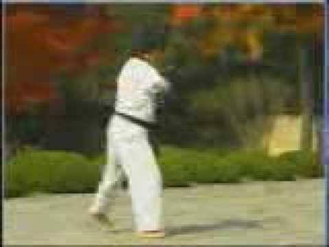 한수 : Taekwondo Poomsae(Form) HANSU