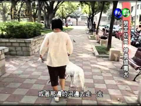 華視新聞雜誌-勞苦功高 神勇緝毒犬