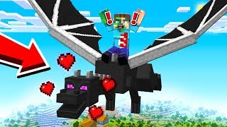 HOW TO TRAIN YOUR ENDER DRAGON!