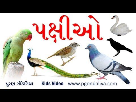 પક્ષીઓના નામ | Birds Name in Gujarati | K.G.| Kids Video by Puran Gondaliya