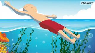 Правила поведения на воде при рыбалке