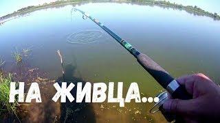 Как рыбалка сегодня