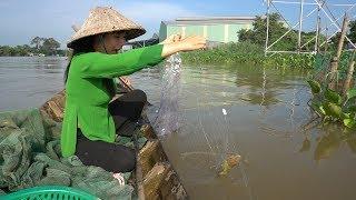 Thả Lưới trên Sông Hậu dính Cá Trê Vàng Mừng Giật Cả Mình - Thôn Nữ Miền Tây tập 265