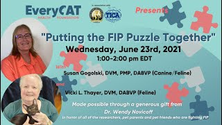 Putting the FIP Puzzle Together