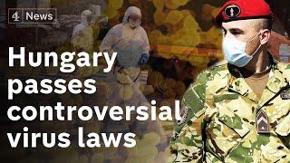Hungary passes controversial coronavirus law - opposition say puts democracy in 'quarantine'