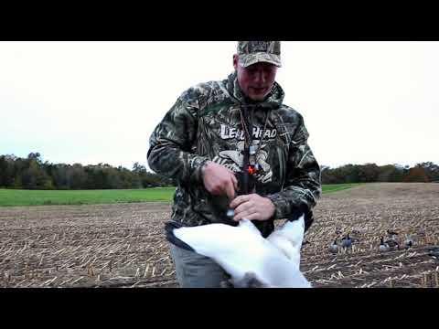 hunts-to-remember-mid-season-goose-hunting-minnesota