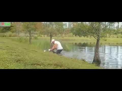Homem luta com jacaré para salvar cachorro, ele abriu a boca do réptil