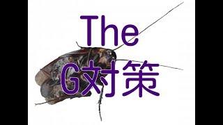 【ゴキブリ退治】ゴキブリ対策はハッカ油とこれ。カラダと環境に優しいG対策