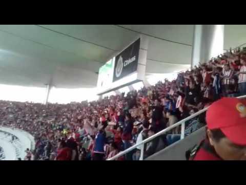 """La hinchada del Guadalajara vs tigres"" Barra: La Irreverente • Club: Chivas Guadalajara"