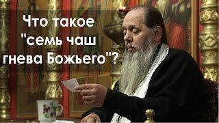 """Что такое """"семь чаш гнева Божьего""""? (прот. Владимир Головин)"""