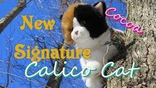 New Signature Calico Cat