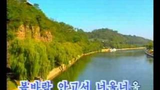 DPRK Music 1-13 대동강 실버들
