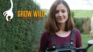 Thumbnail for How to Sow a Wildflower Patch with Hannah Grows
