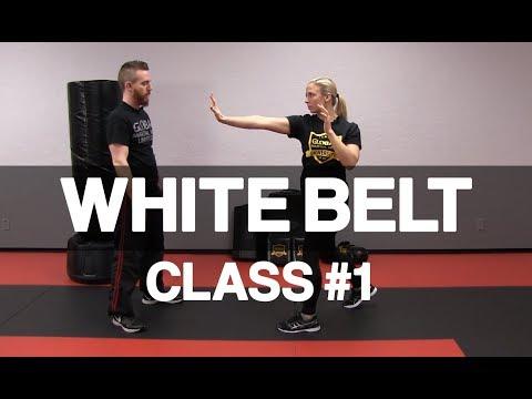 Introduction to Krav Maga - White Belt Class #1 (Stance & Palm Strike)