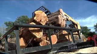 Cedar Furniture (Texas Country Reporter)