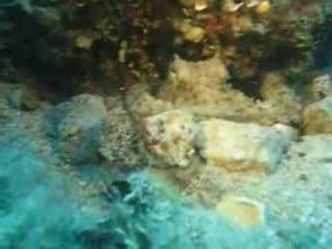 Insel Cres, Diving Center Cres, Tauchplatz 3 Zinnen