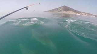 Куда в новороссийске съездить на рыбалку