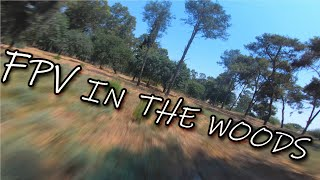 SatisFlyer-FPV In the woods