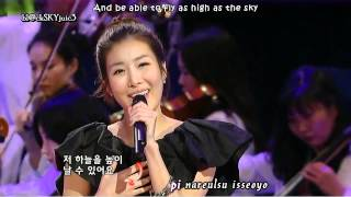 Davichi - A Goose's Dream LIVE [eng sub+kara roman]