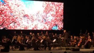 """ВЕНСКИЕ КЛАССИКИ""  В. А. Моцарт ""Symphony № 40 in G. Minor"""
