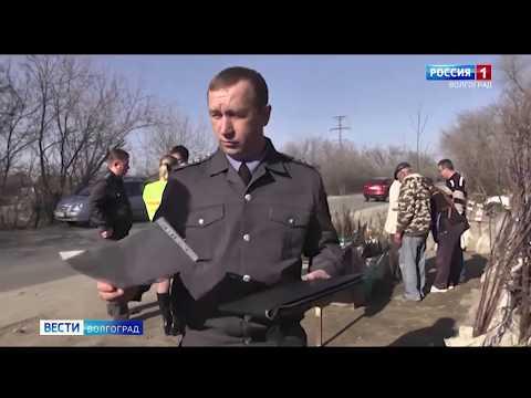 Управлением Россельхознадзора проведен контроль качества посадочного материала на стихийном рынке Волгоградской области
