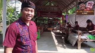 クラウドファンディングプロジェクト:バリ島の原風景&伝統を守りたい!古き良きバリを守ろうとする村に支援を〜伝統工芸イカットの復活も〜