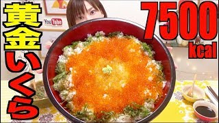 【MUKBANG】 Colorful Salmon Roe Rice Bowl Using Golden Salmon Roe!! [7500kcal] [CC Available]