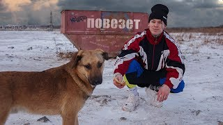 NILETTO - Повезёт (mood video 12+)