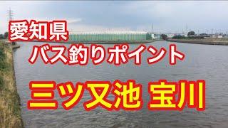 三ツ又池宝川愛知県穴場バス釣りポイントブラックバス