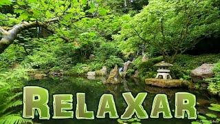 Música Para Dormir com Relaxante Som da Natureza