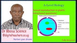Sexual reproduction in plants (Structured questions)