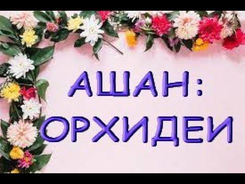 """ЗАВОЗ ОРХИДЕЙ в АШАНЕ,26.08.21,ТЦ """"Космопорт"""",Самара."""