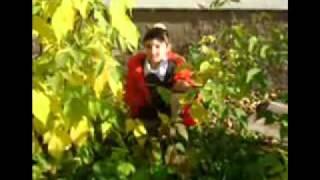 Видео клип с Алсу - Туган тел (Родная речь)