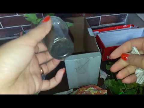 Распаковка посылок с растениями (черенки пеларгоний) unboxing