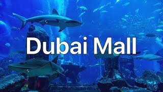 DUBAI MALL- THE BIGGEST CENTER IN THE WORLD! LUNCH IN JUNGLE. BURJ KHALIFA