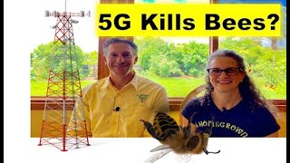 5G Towers EFFECT Bees, Birds, Trees & PEOPLE  |  FACT or FICTION ???