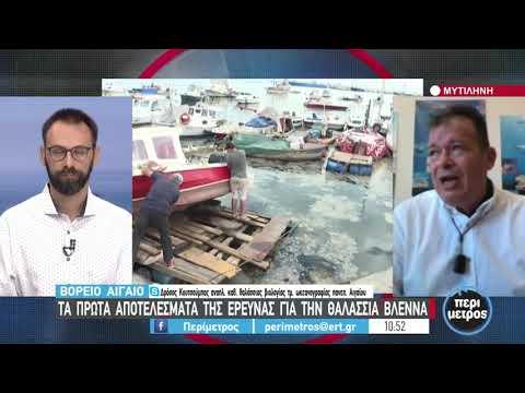 Η θαλάσσια βλέννα έφτασε μέχρι το φανάρι της Ροδόπης   30/06/2021   ΕΡΤ