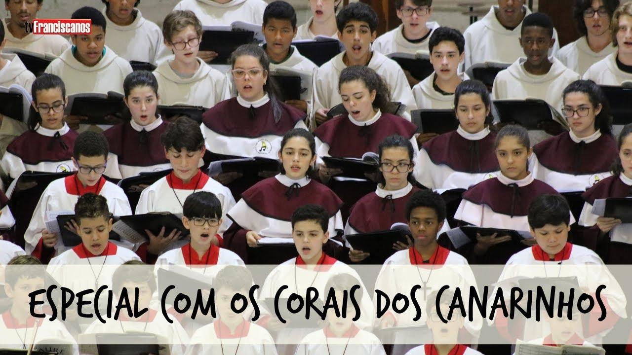 Especial com os Canarinhos #05 | Concerto