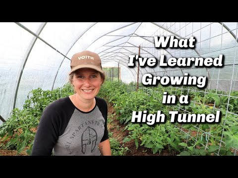 , title : 'High Tunnel Greenhouse Tour   What I've Learned   Tomato Pruning