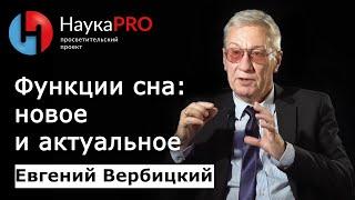 Евгений Вербицкий - Функции сна. Новое и актуальное